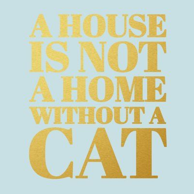 Sweetums Wall Decals A House Is Not A Home Without A Cat Wall