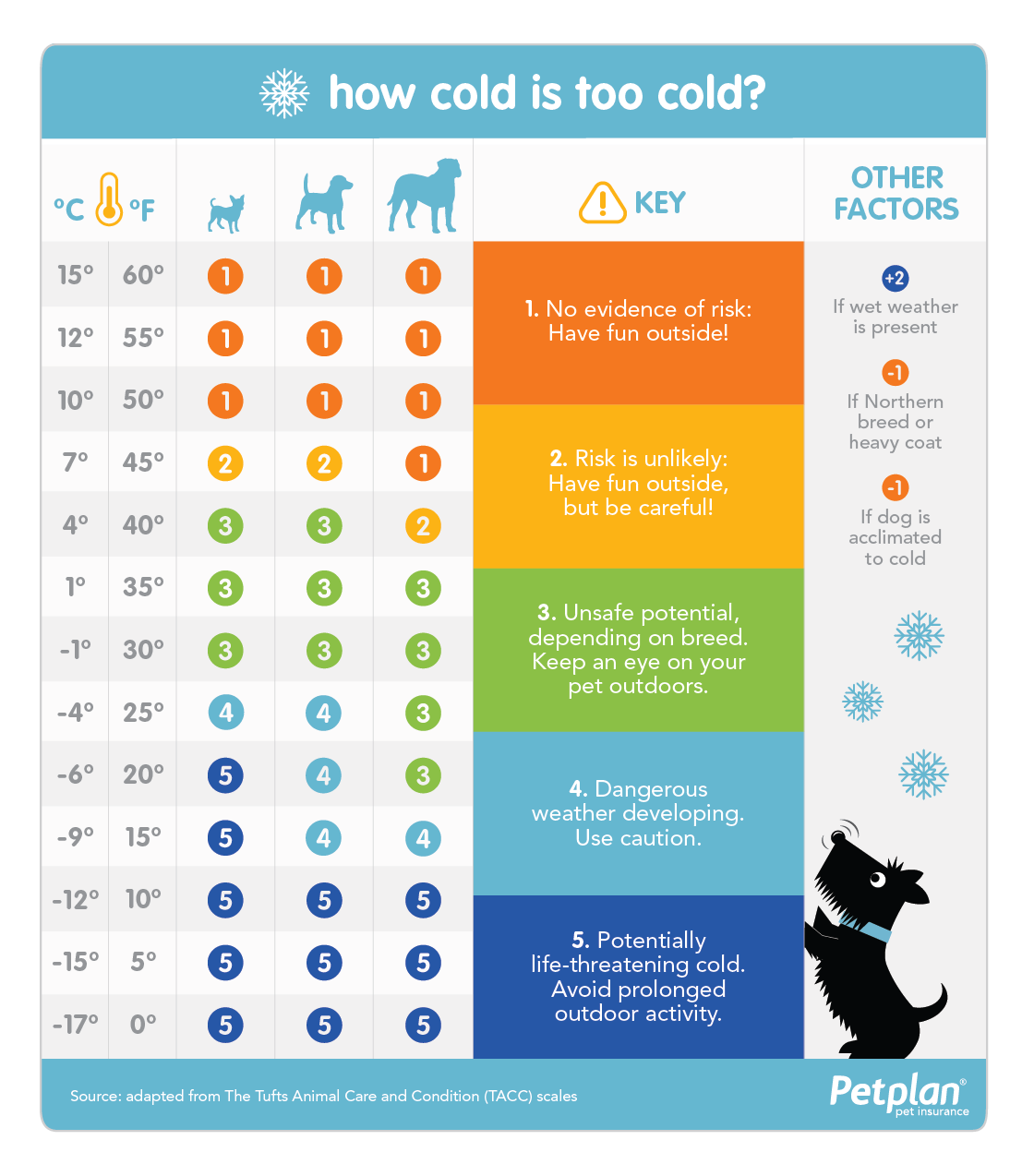 How Cold Is Too Cold For Your Dog Petplan Cold Weather Dogs Insulated Dog House Pet Insurance Cost