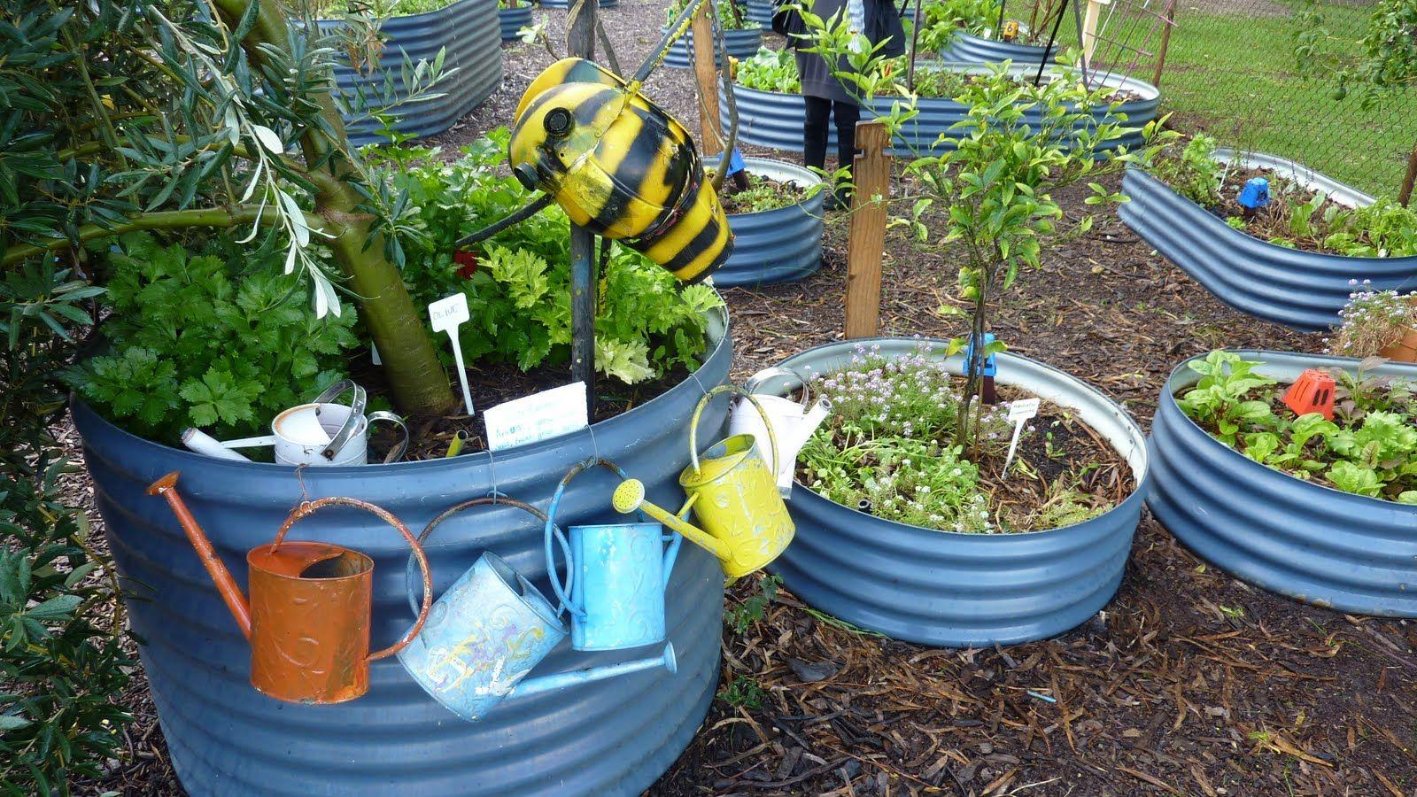 Garden Design Blog Perth School Kitchen Tour