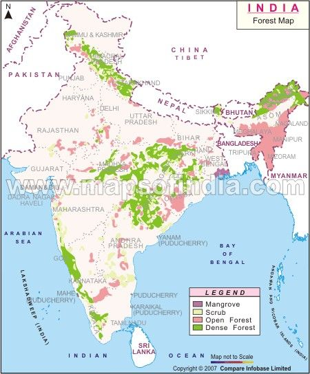 Forest vegetation map of india shows the eco regions in india india forest vegetation map of india shows the eco regions in india india is one of the 17 megadiverse countries in the world gumiabroncs Gallery