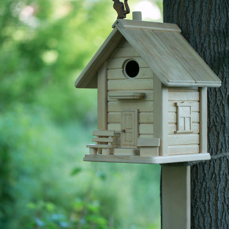 картинки кормушек и скворечников для птиц
