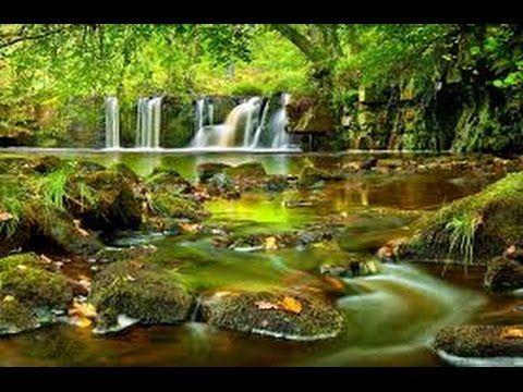 كيفية وضع خلفية شاشة متحركة طبيعية على سطح المكتب Vista Waterfall Waterfall Pictures Forest Waterfall