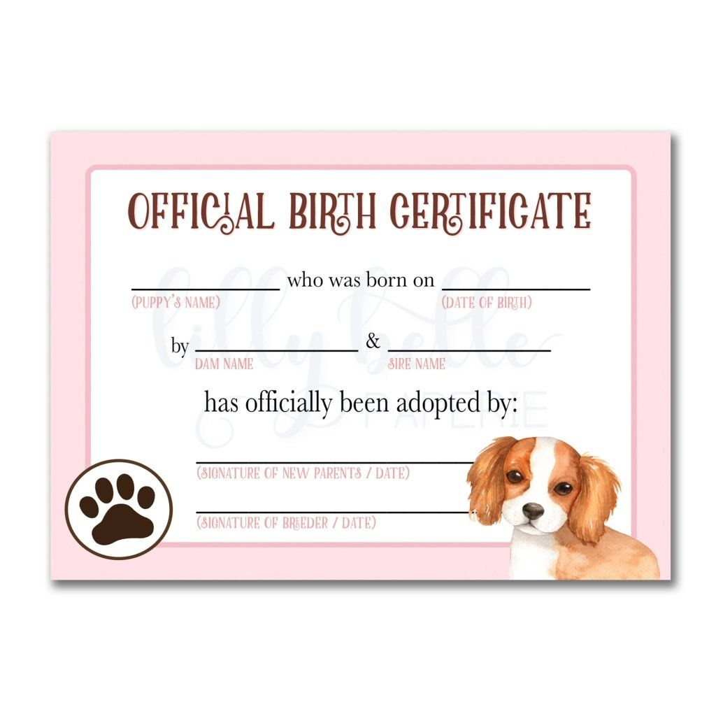 Pink Cavalier King Charles Spaniel Birth Certificate Pet Adoption Certificate Adoption Certificate Dog Adoption Certificate