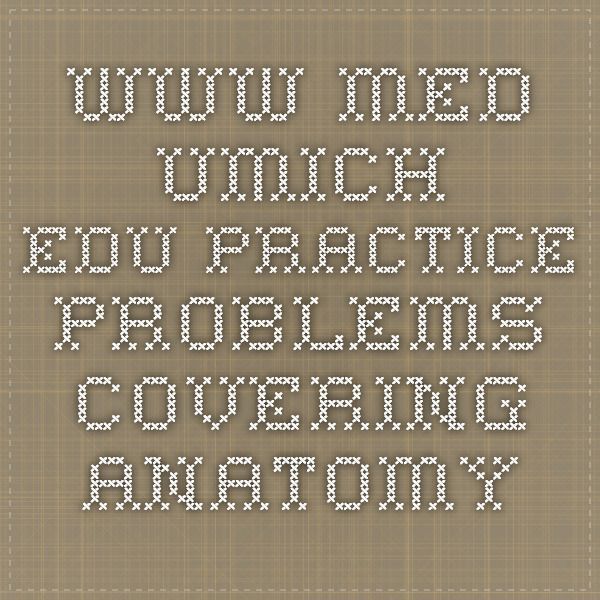 Medumich Practice Problems Covering Anatomy Nerdy Is What