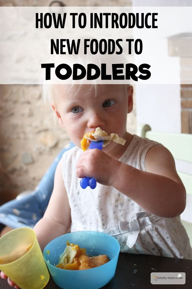 How To Introduce New Foods Picky Eaters And Toddlers