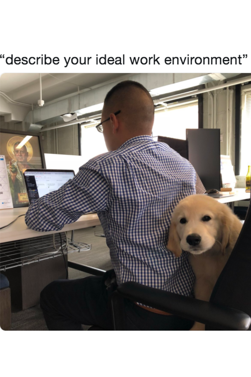 Let S Have Fun With Meme In 2021 Dog Memes Funny Animal Memes Dog Jokes