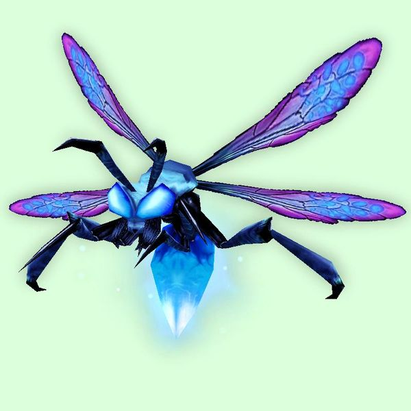 Blue Firefly (With images) Pets, Firefly, Hunter