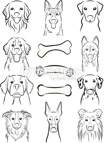 Illustration Of The Face Of The Dog With Images Dog Line