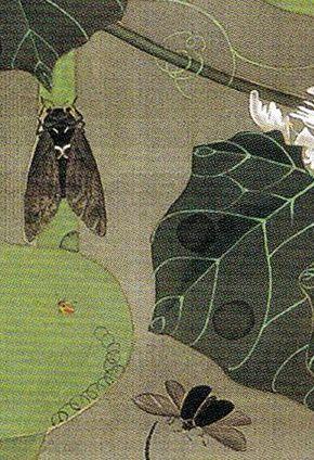 Itō Jakuchū - :池辺群虫図 Ikebe Gunchu-zu(Insects at a Pond) - 1761  -  detail