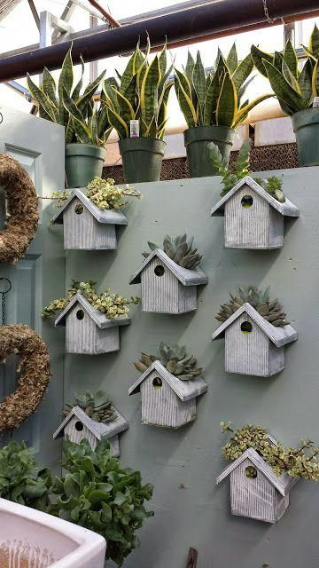 Bird house planters ~ cutouts in the tops for planting succulents or herbs ~ these are inside a greenhouse but could also mount along a backyard fence or in a garden   from I Love My Garden #birdhouses #plantingsucculents
