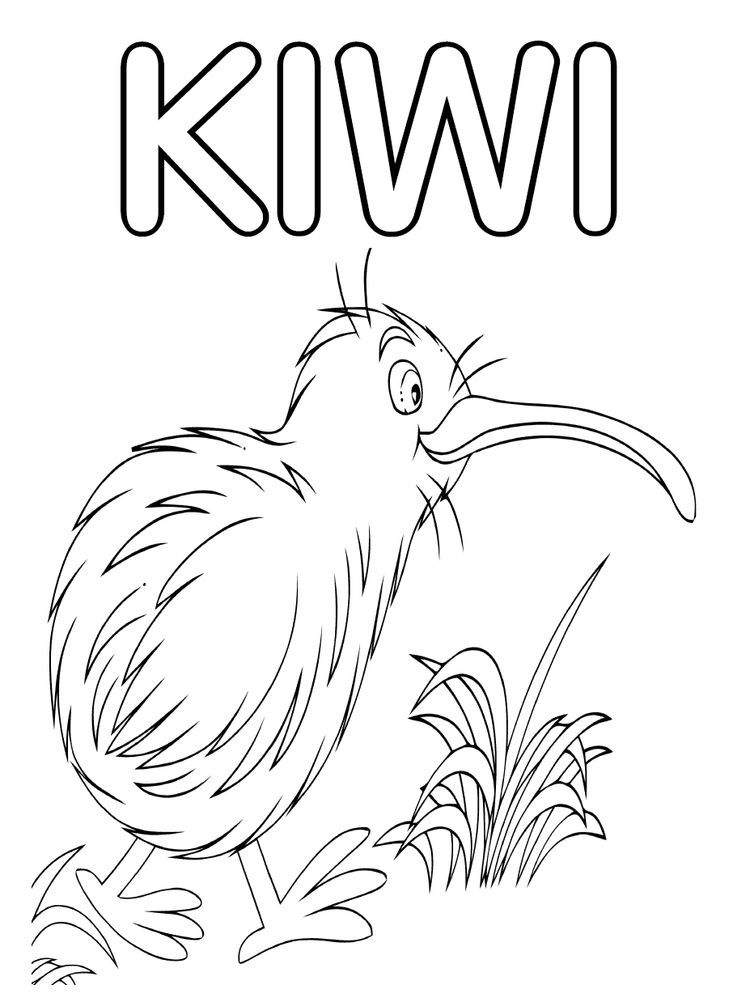 Kiwi Coloring Page To Print Kiwi Is The Name Of A Bird That Is Easily Recognized By Looking At Its D Bird Coloring Pages Coloring Pages Mermaid Coloring Pages