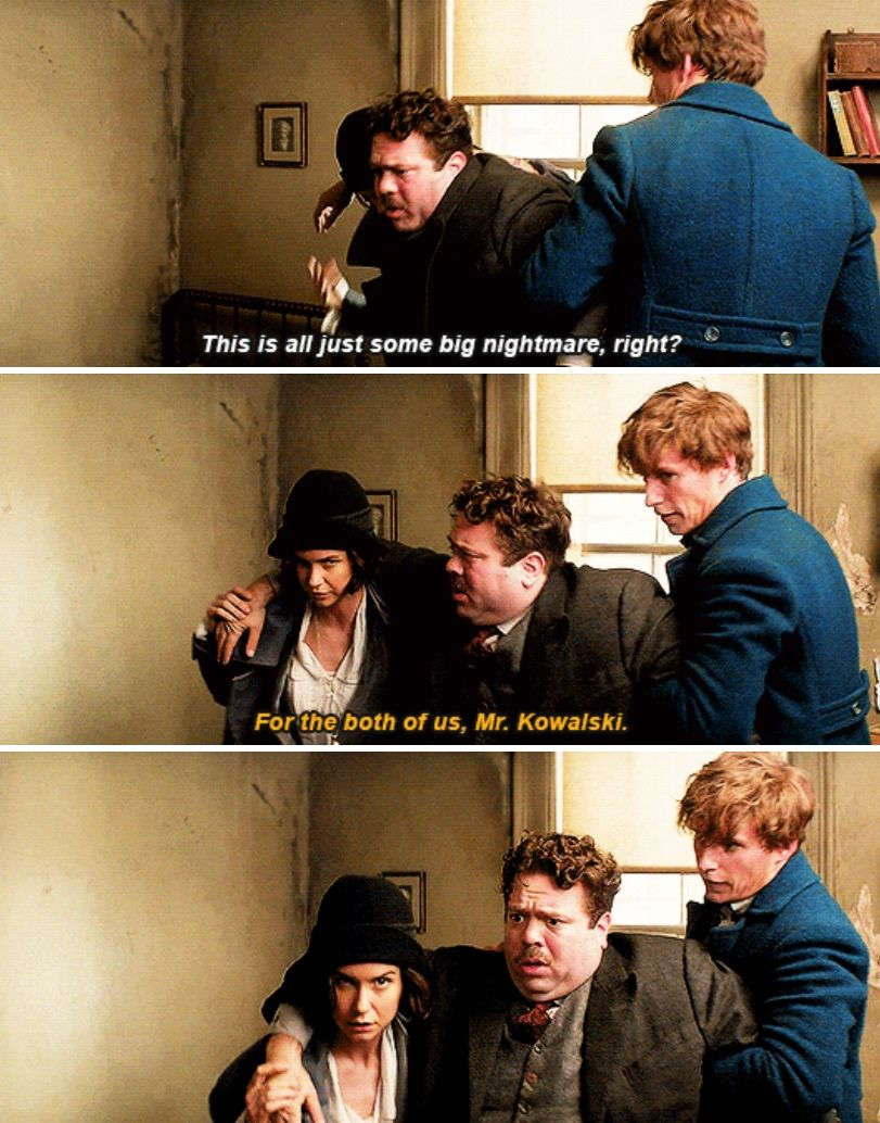 Fantastic beasts with images harry potter fantastic
