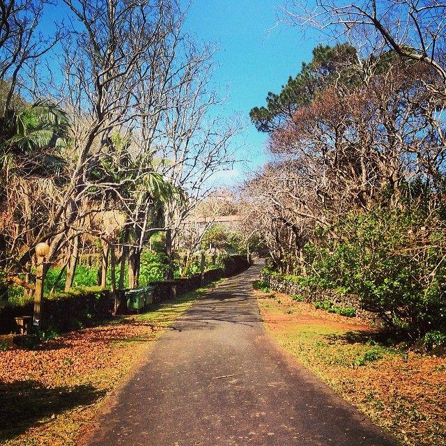 Parque De Campismo Da Furna Em São Roque Do Pico Açores Furna S Camping Parque In São Roque Do Pico Açores Instagram Country Roads Island