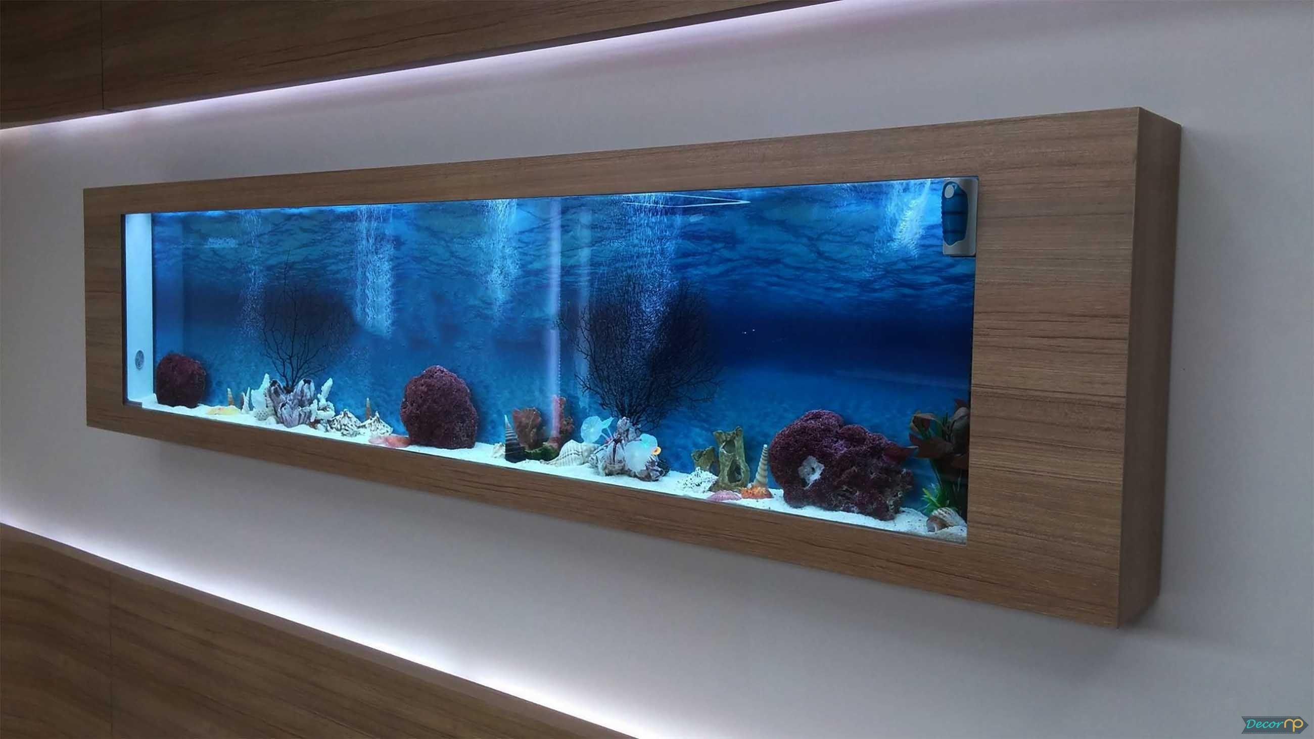 Account Suspended Wall Aquarium Fish Tank Wall Aquarium