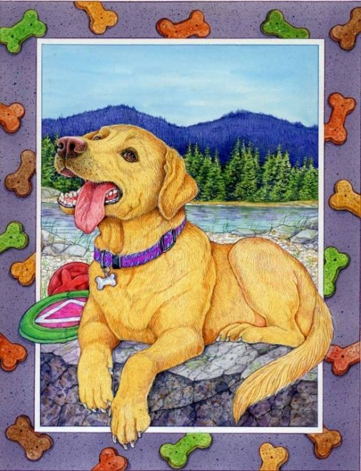 Sherry Neidigh ~ Labrador Retriever