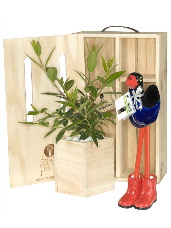 Fathers Day Gift Ideas With Trees Please Great For Dad Delivered Within NZ