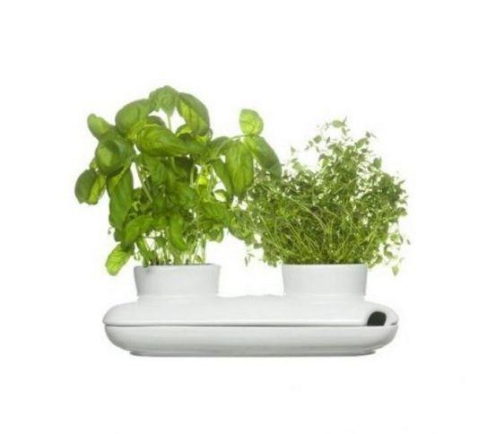 Sagaform - wazon na zioła Herbs & Spices