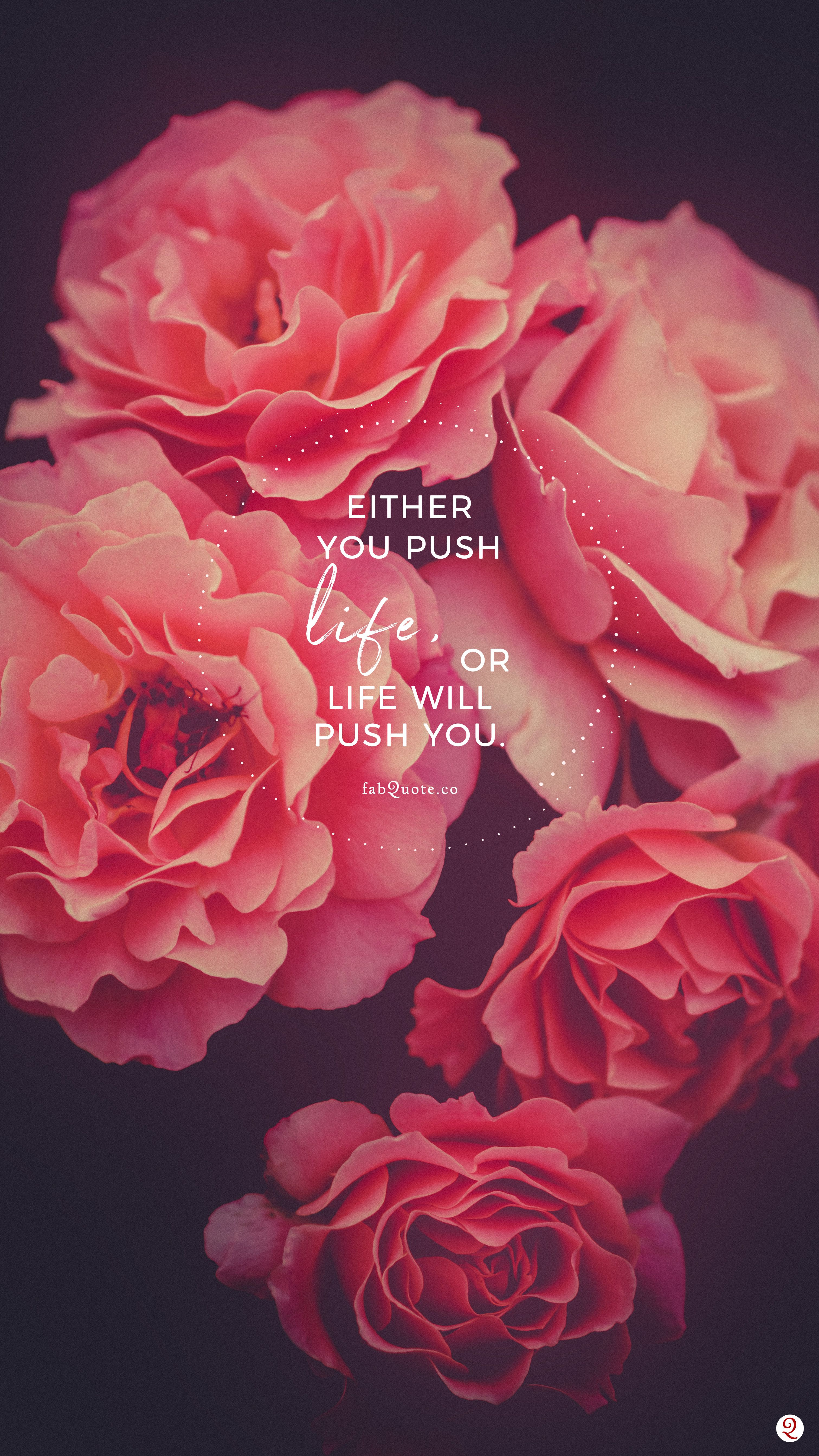 Push Life Flower Background Wallpaper Aesthetic Iphone Wallpaper Cute Wallpapers Coolest wallpaper flower with quotes