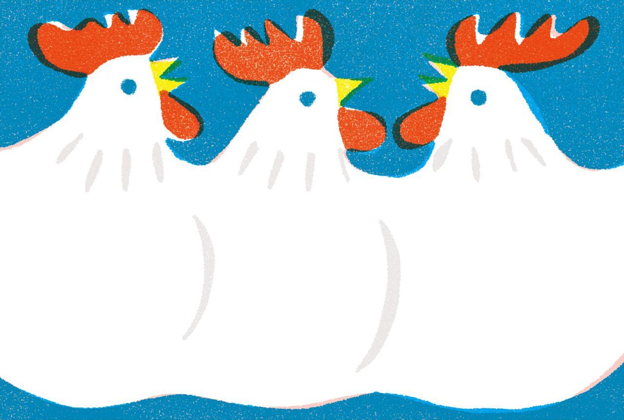 yamauchi kazuaki illustrations : 画像 | 鳥 | pinterest | イラスト