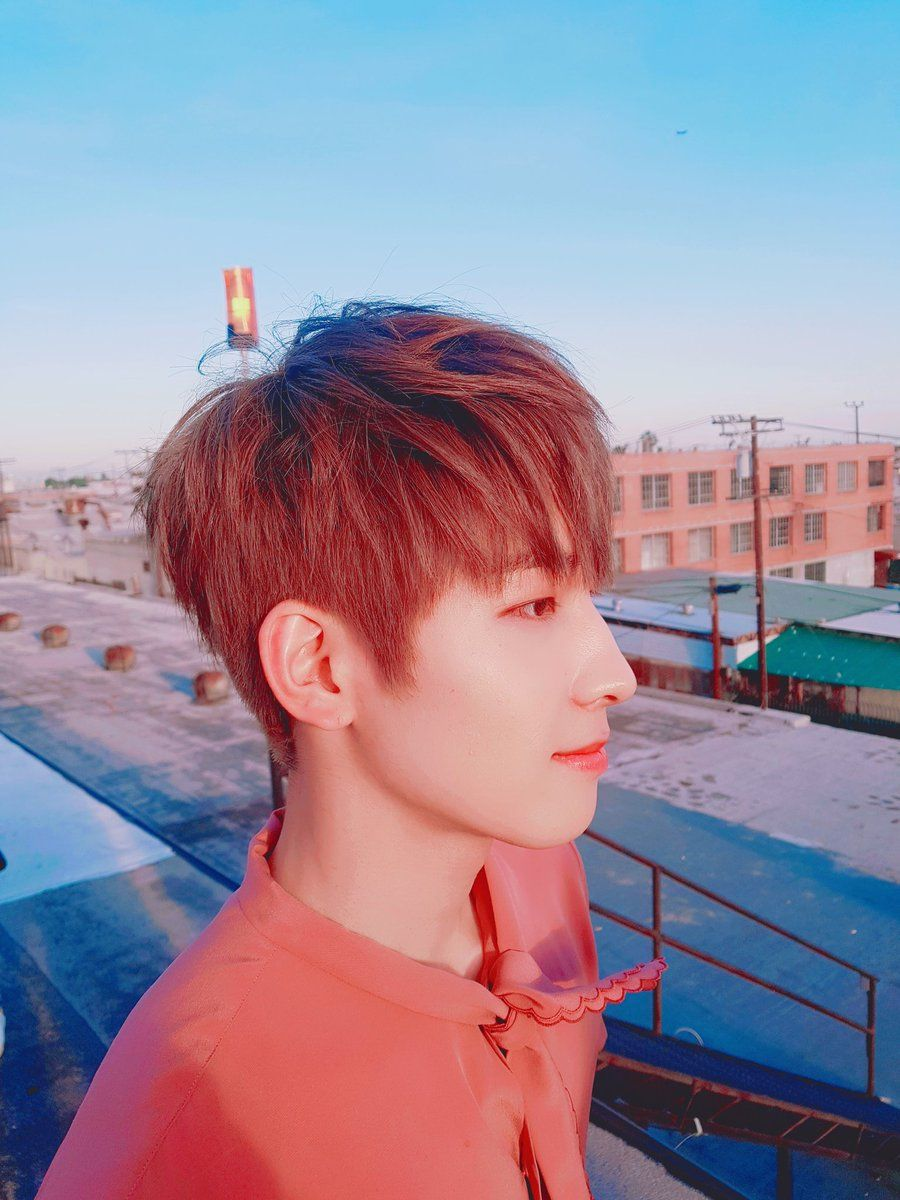 Wonwoo (SEVENTEEN)