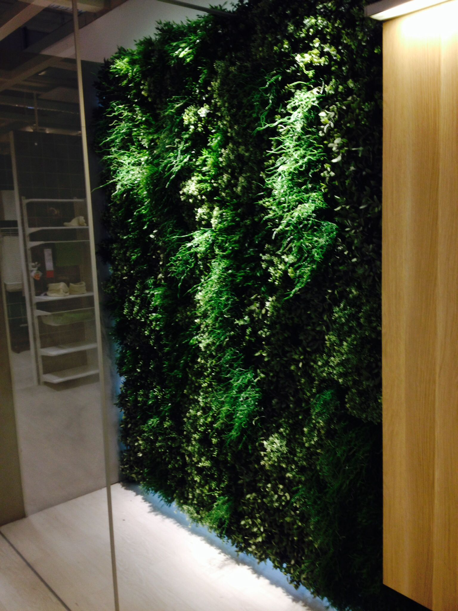 Fake plant wall ikea indoor playground fun fittings for Indoor wall planters ikea