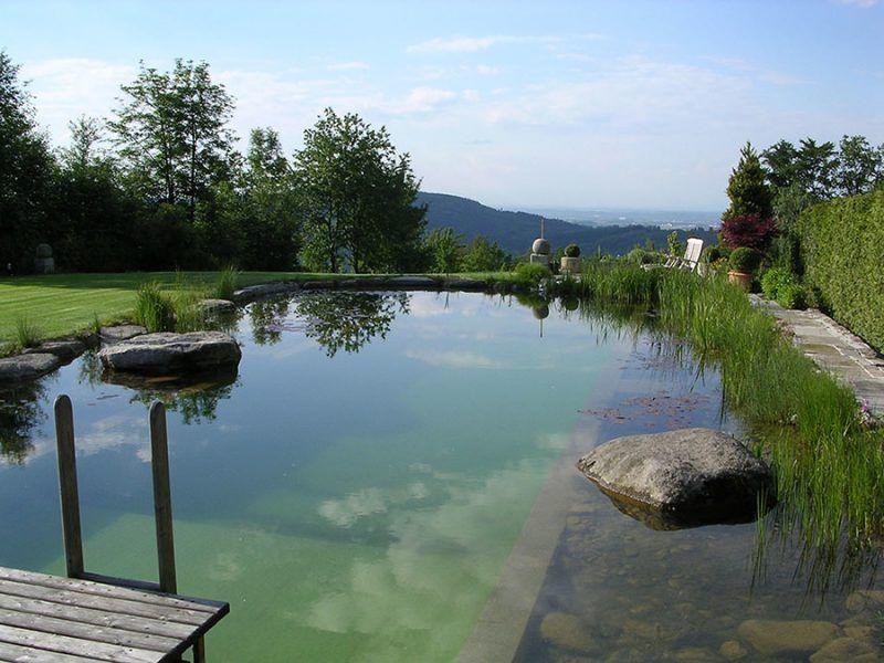 Wie viel darf ein Schwimmteich kosten? Landscaping - kosten pool im garten
