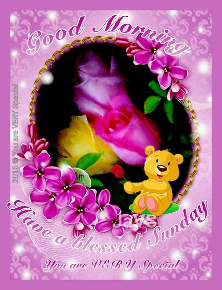 Good Morning Sunday Cute Images : Good morning have a blessed special sunday pictures