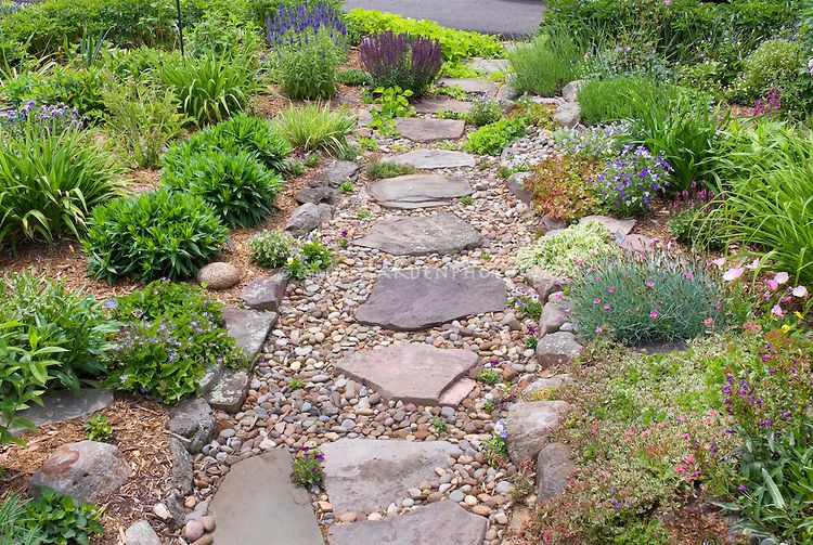 Rock Garden On Hillside Sloping Garden With Flagstone And