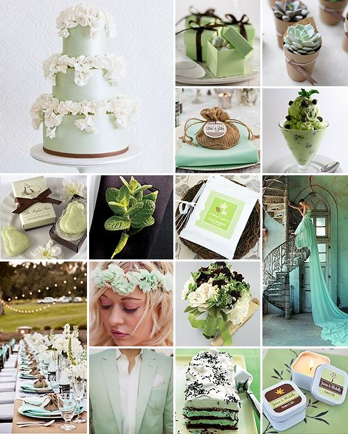 Mint Green And Chocolate Wedding Color Palette