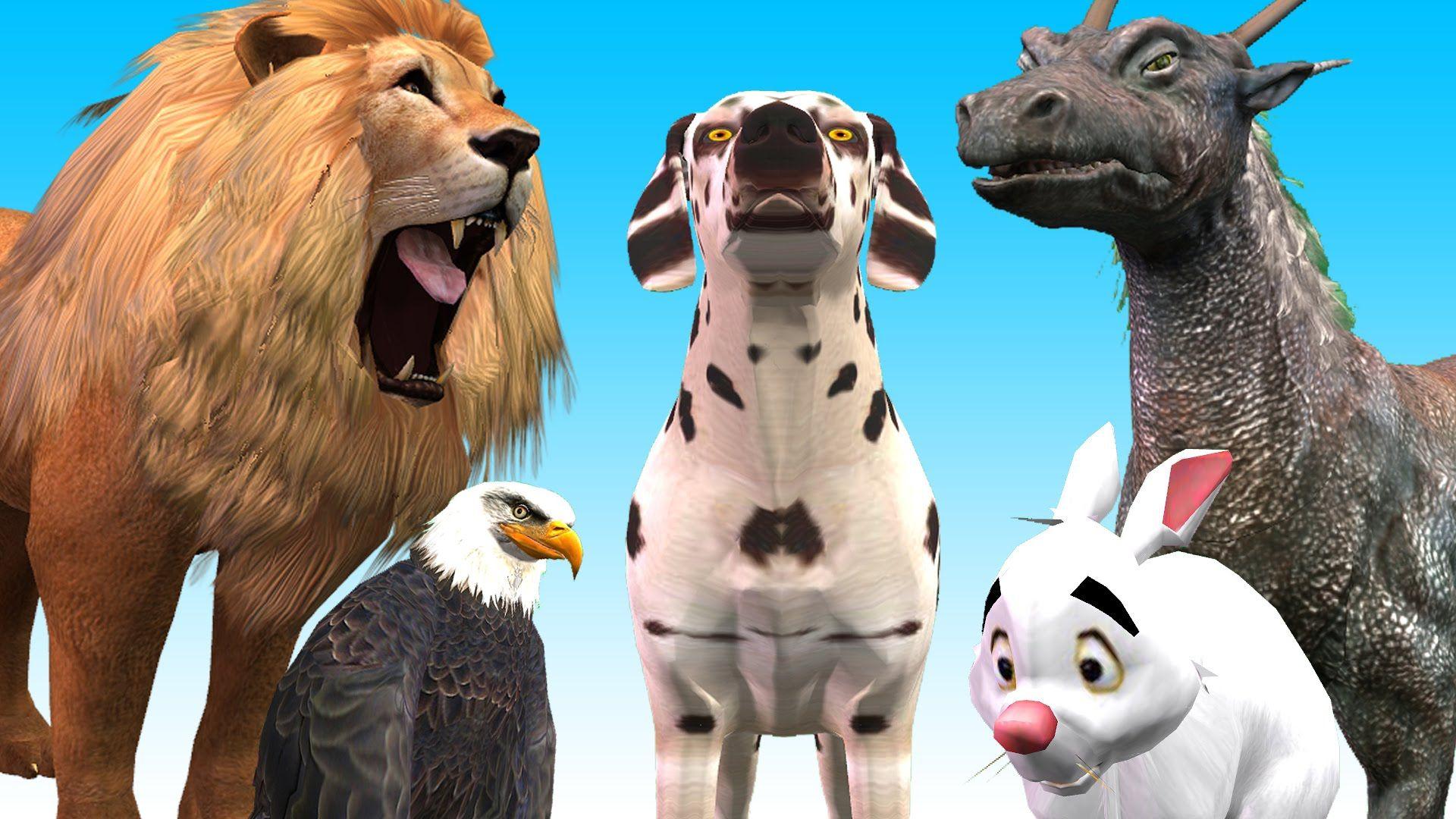 Animal Finger Family Finger Family Song 3D Animation