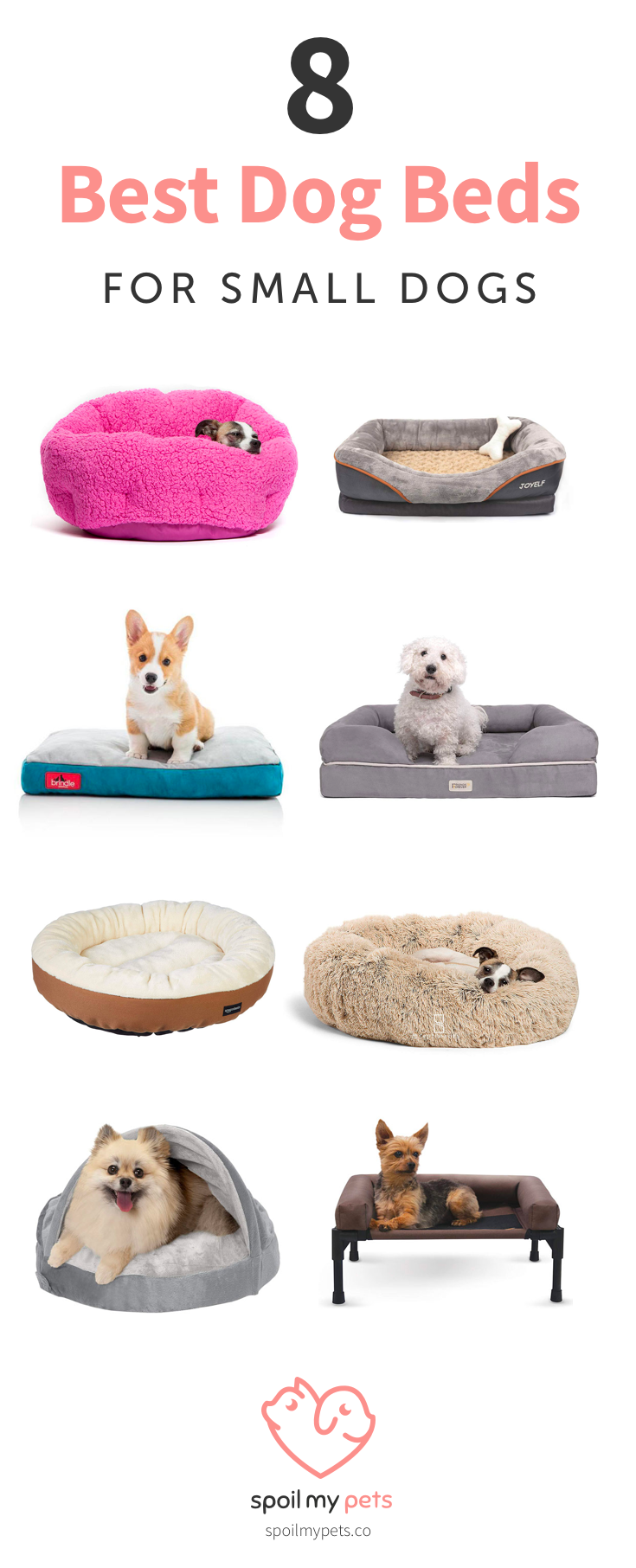 8 Best Dog Beds For Small Dogs Dog Beds For Small Dogs Cool Dog Beds Cozy Dog Bed