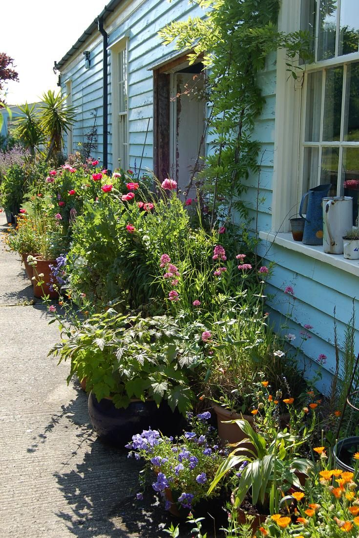 a cottage-by-the-sea. The Battery, Whitstable | garden and outdoor ...