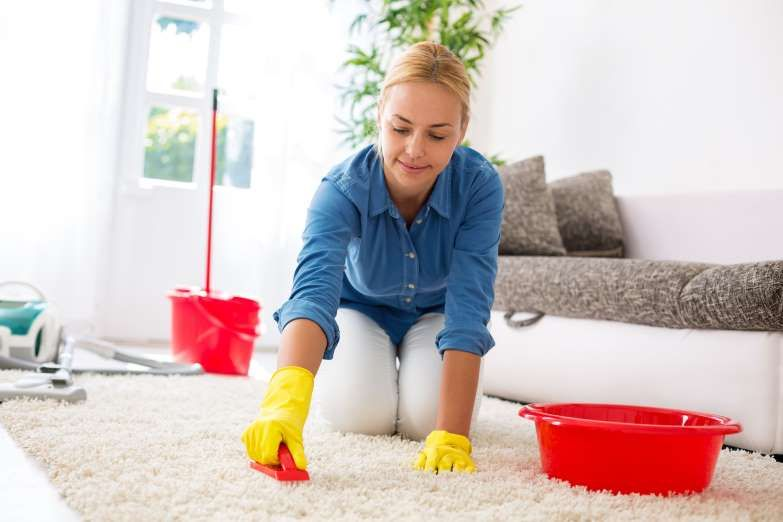 Housewife cleaning carpet with brush and doing housework - Didesign021/iStockphoto/Getty Images