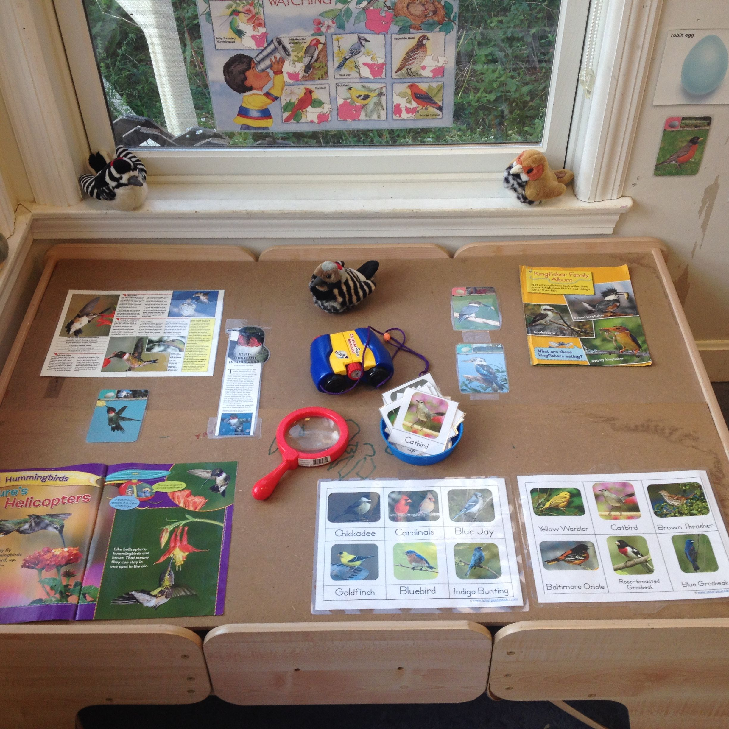 dramatic play bird watching station creations from children