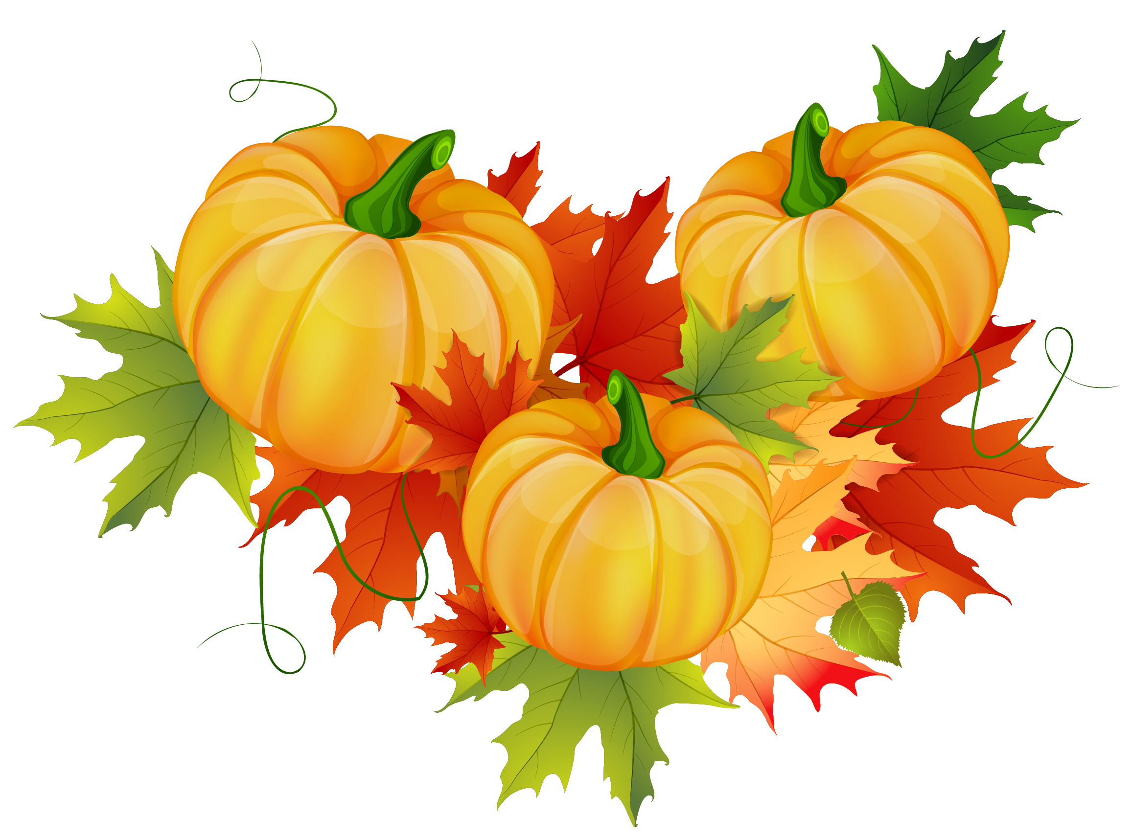 Thanksgiving Pumpkin Decoration PNG Clipart (With images