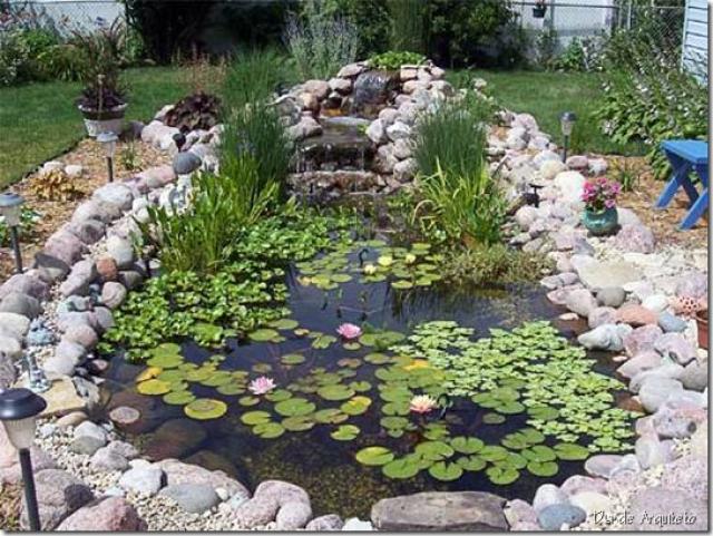Como dise ar y crear un estanque para tu jardin for Como oxigenar un estanque