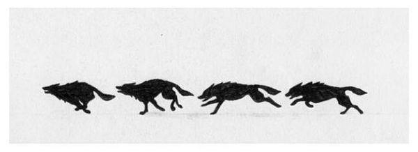 Wolves Running Tattoo Tattoo Pinterest Wolf Tattoos Tattoos
