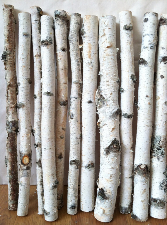 20 White Birch Logs By Lightofdaycreations On Etsy 19 50