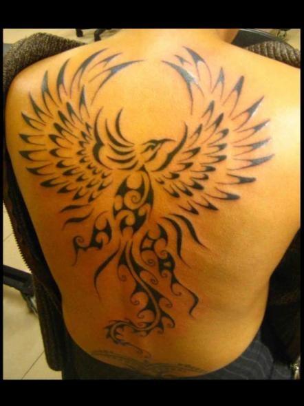 Tatouage Tribal Dos Homme Tatouage Phoenix Tribal Dos Homme