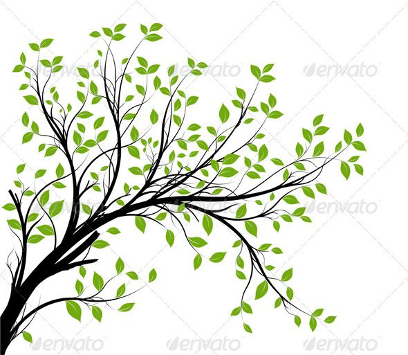 Vector Tree Branch Silhouette Over White