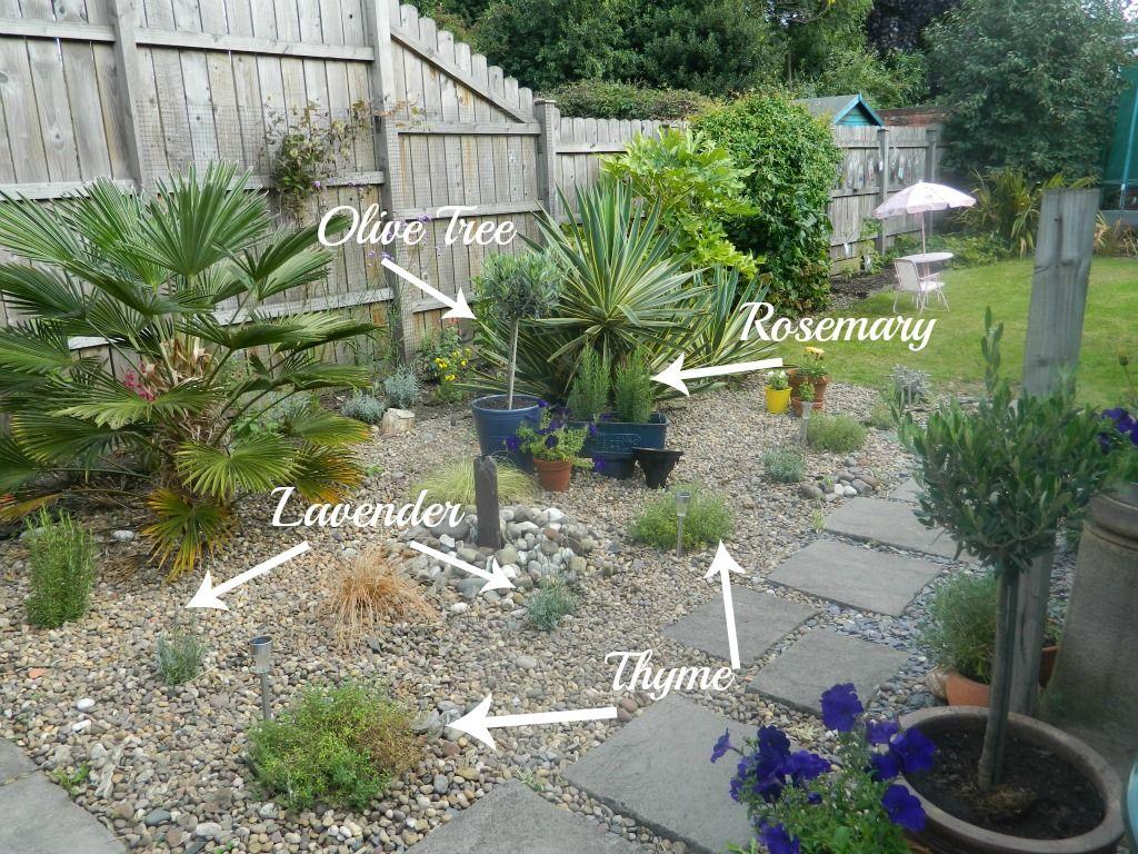 Homebase Garden Makeover Project: The Final Reveal  Garden