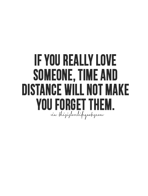 Forget Love Quotes Impressive More Quotes Love Quotes Life Quotes Live Life Quote Moving On