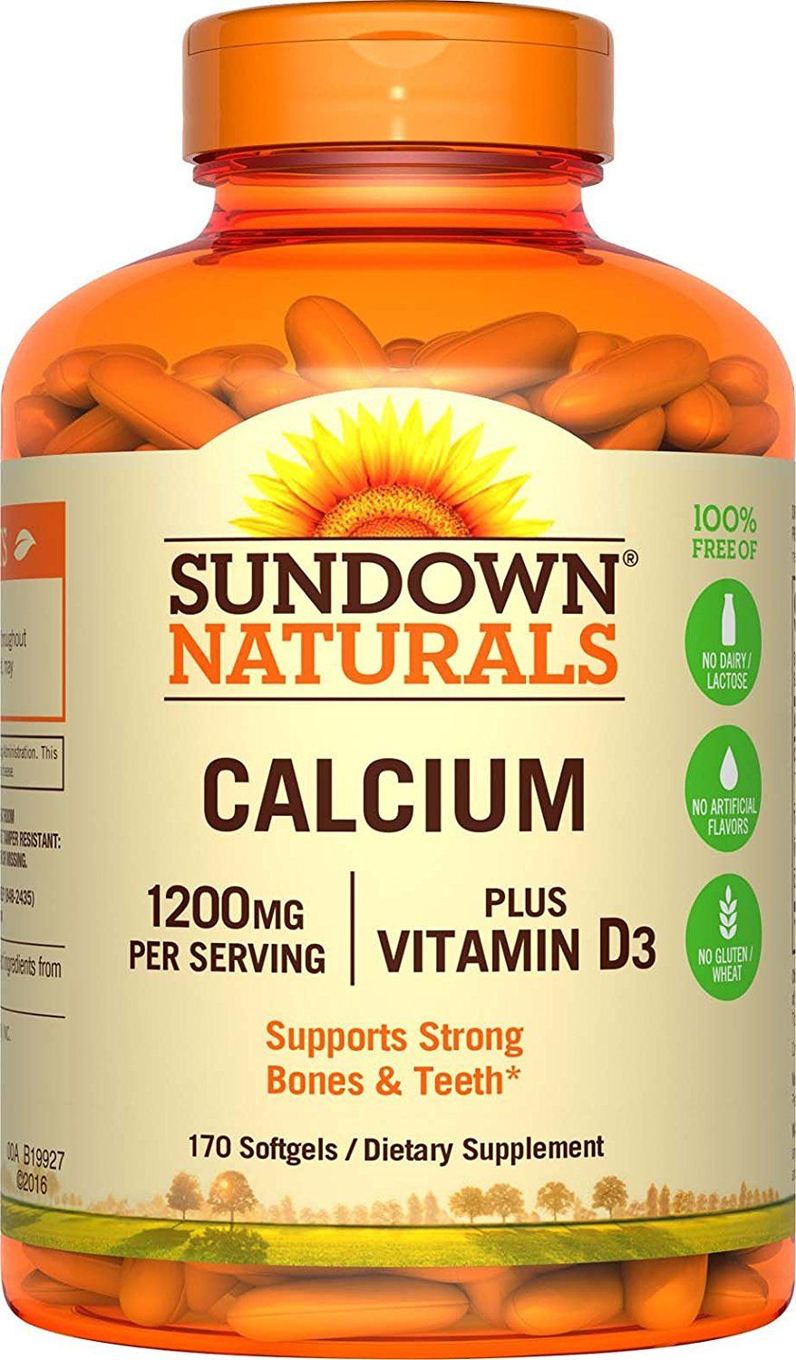 Sundown Naturals Calcium 1200 Plus Vitamin D3 1000 IU, 170