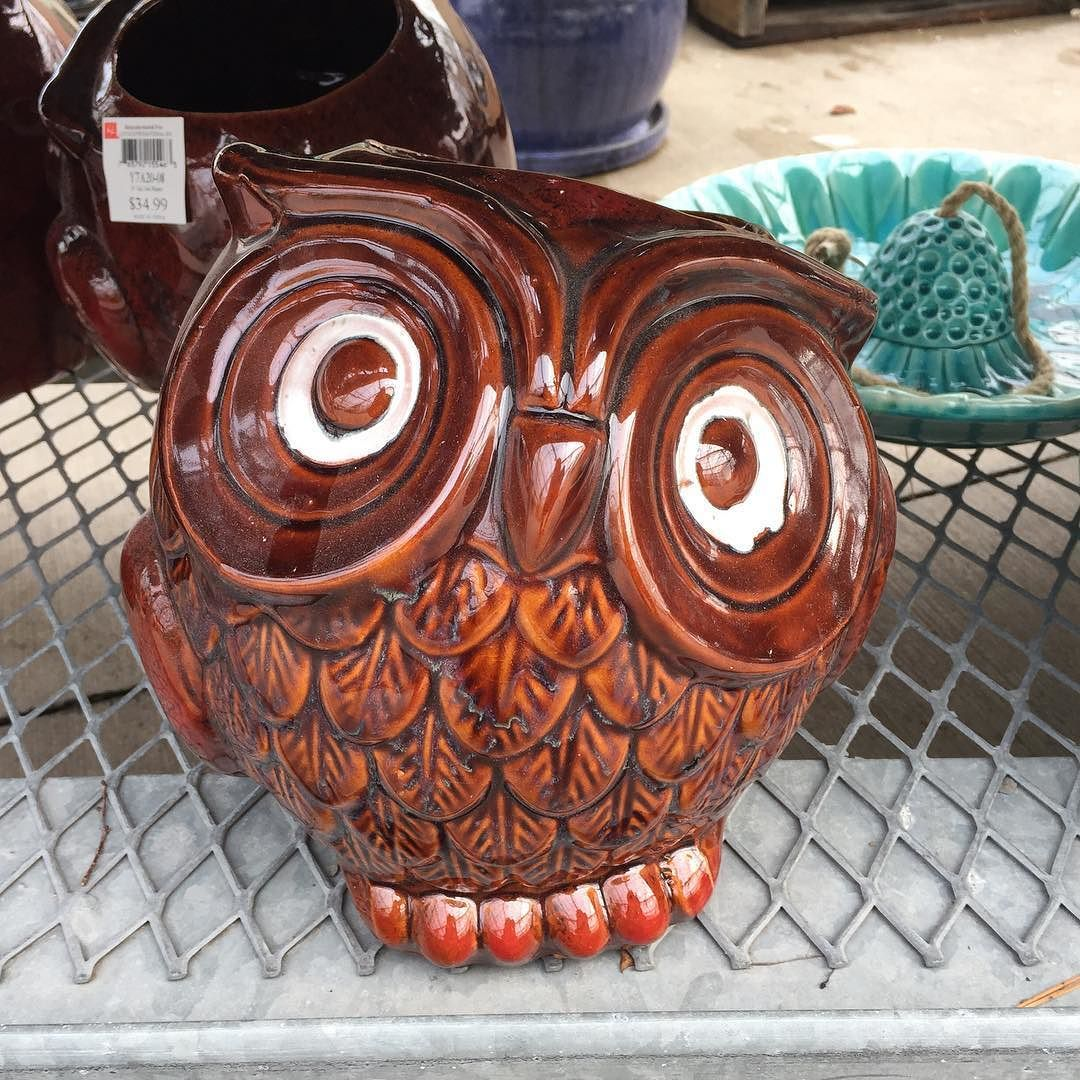 """New pottery came in. You won't believe how beautiful it looks. Here's one new addition. I call her """"the 70's owl"""" and she's adorable. #planter #garden #PenfieldNY"""