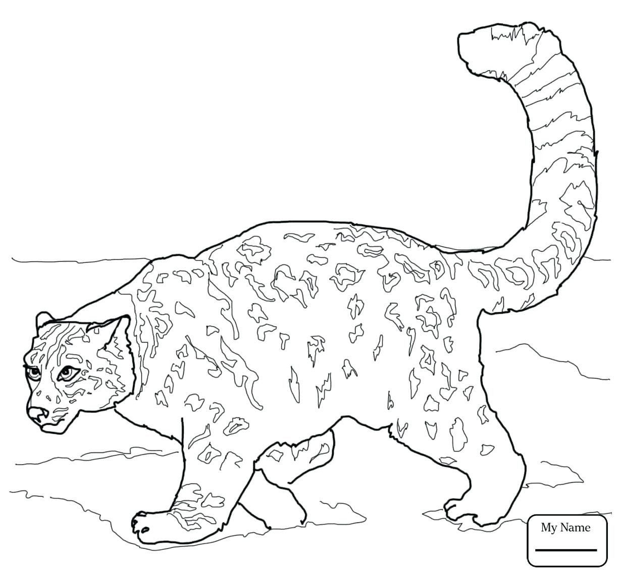 31 Elegant Animal Jam Coloring Pages In 2020 Coloring Pages Free Printable Coloring Pages