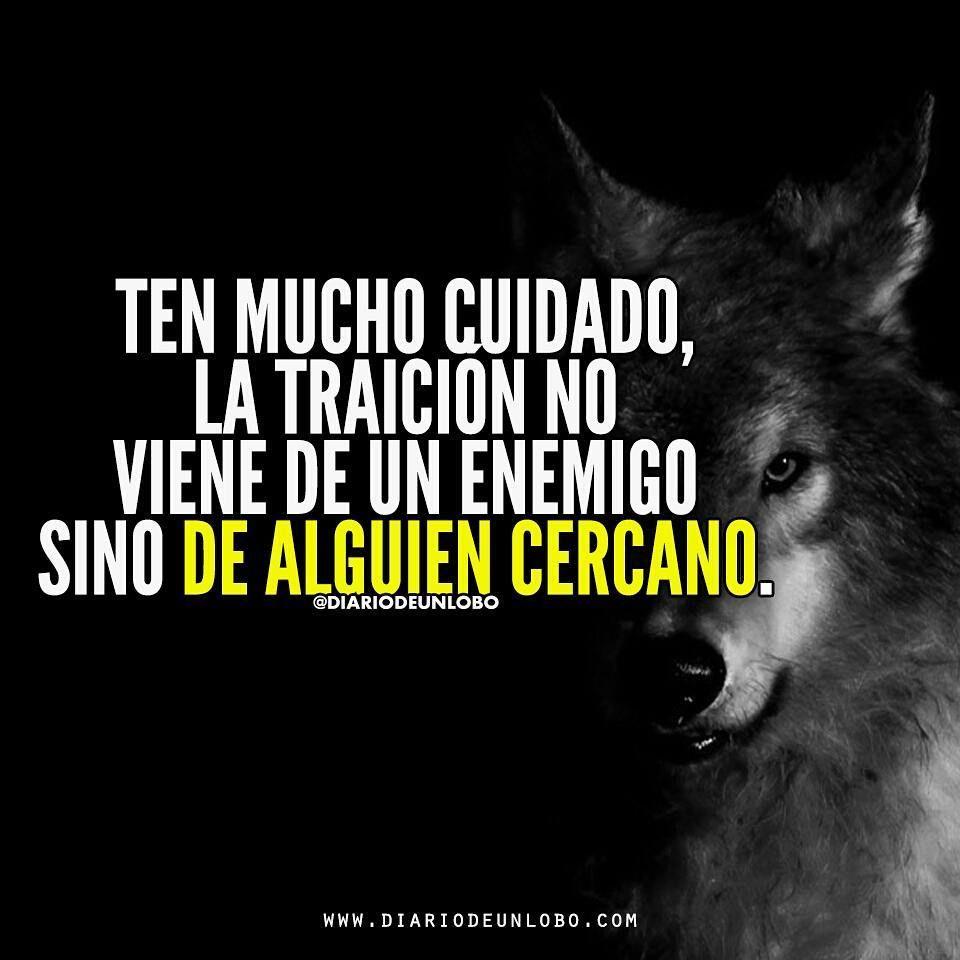 """173 Me gusta, 1 comentarios - Diario de un Lobo (@diariodeunlobo) en Instagram: """"#DiarioDeUnLobo #Frases #iFrases #Quotes #Lobos #Wolves #Lobas #Lobo #Amor #Loba #iFrase…"""""""