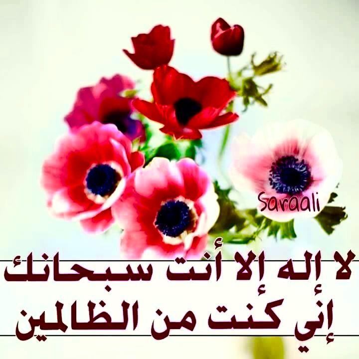 Desertrose لا إله إلا أنت سبحانك إني كنت من الظالمين Quran Listen To Quran Holy Quran