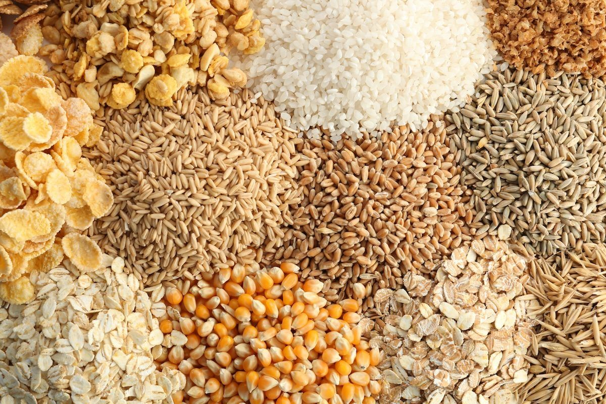 Complete list of grains and pseudograins paleo