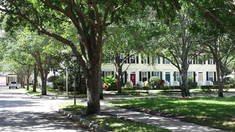 Jupiter In Oaks >> Beautiful Oaks Off Redwood Drive In Jupiter Fl Tree Lined