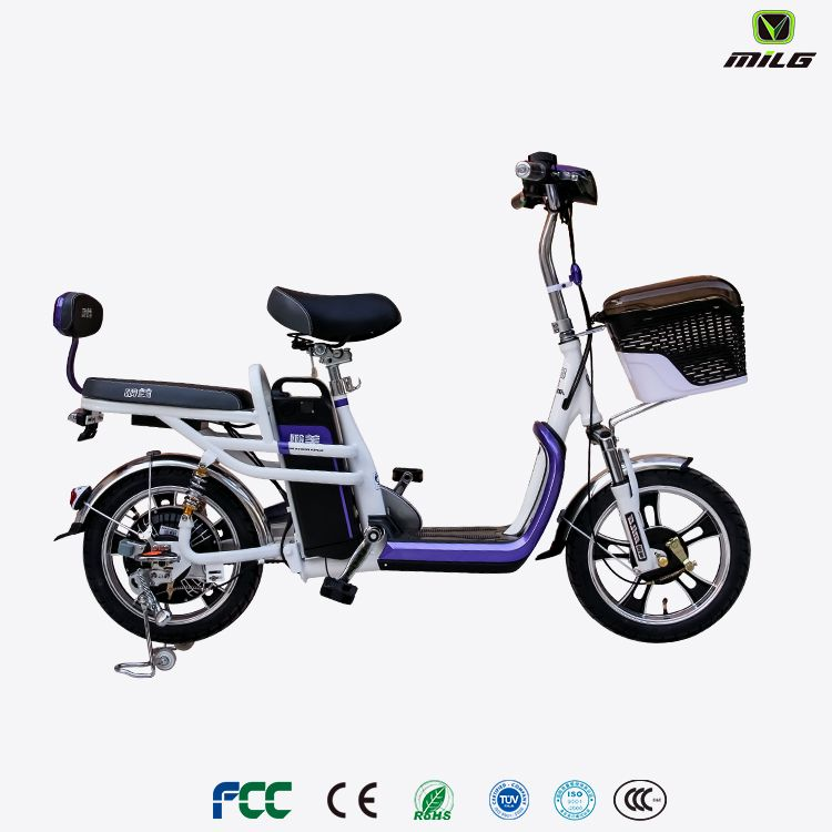 2018 New Model Cheap Price 2 Seater Electric Bike Electric